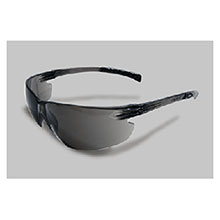 Radnor Safety Glasses Classic Plus Series 64051224
