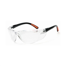 Radnor Safety Glasses Action Series Clear 64051272