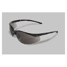 Radnor Safety Glasses Series Black 64051307