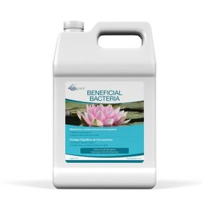 Aquascape Beneficial Pond Bacteria Liquid 1 Gallon for koi ponds
