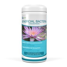 Aquascape Beneficial Bacteria Concentrate 1.1 lbs.