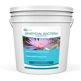 Aquascape Beneficial Bacteria 7lbs for koi ponds
