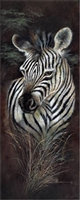 12x36 Zebra, Striped Innocence, Artist Ruane Manning - Safari Art Print Poster Unframed