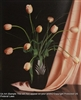 8x10 Inch Peach Tulip Fine Art Print and Poster in Bouquets #x37-810-H