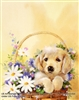 8x10 Inch Dog in Basket Fine Art Print and Poster Animals in Dogs #x41-810-E