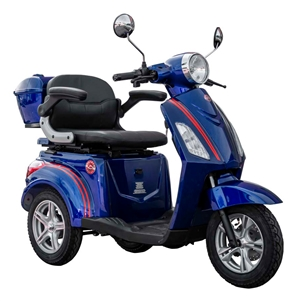 Roadstar Deluxe MP4 V3 500W, 60V (Blue)