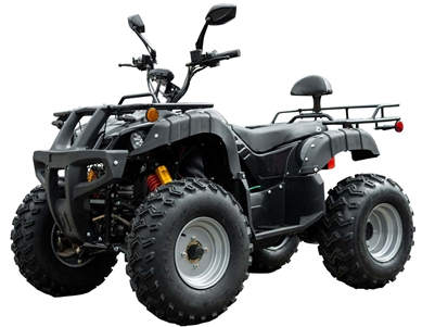 Beast AWD ATV (Black)