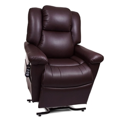 DayDreamer PowerPillow PR-632 with MaxiComfort Lift Chair