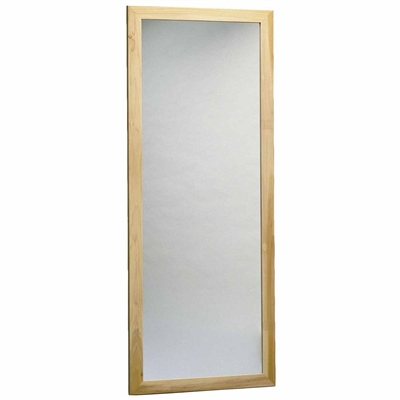 Bailey Model 702 Wall Mounted Posture Mirror