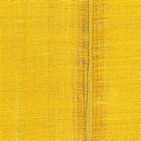Elitis Nomades VP 895 21.  Sunflower yellow silk and linen weave vinyl wallpaper for a wall. Click for details and checkout >>