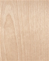 White Birch Wooden Wallpaper.  Click for details and checkout >>