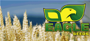 Eagle Seed Buck Monster Forage Wheat - 50 lbs