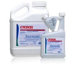 Cycocel Plant Growth Regulator - 1 Gallon