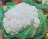 Cauliflower Early Snowball Seed - 1 Packet
