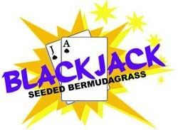 Blackjack Bermuda Grass Seed - 20 Lbs.