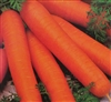 Carrot Nantes Coreless Seed - 1 Packet