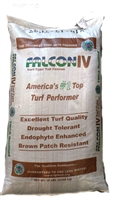 Falcon IV Turf Type Tall Fescue - 1 lbs.