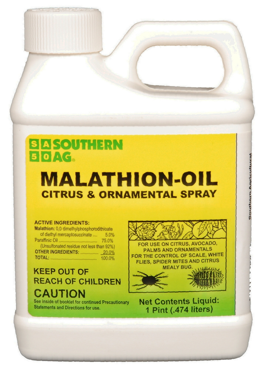 Malathion an Organ Osphate Insecticide Essay