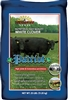 Patriot White Clover Seed - 25 Lbs.