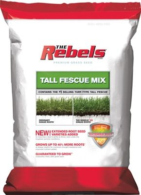 Rebels Tall Fescue Grass Seed - 3 Lbs.