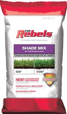 Rebel Tall Fescue Shade Grass Seed - 3 Lbs.
