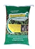 Renovation White Clover Seed - 25 Lbs.