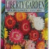 Strawflower - Tall Mix - 1 Packet
