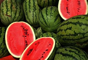Charleston Gray Watermelon Seeds (heirloom variety) - 1 packet