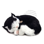 Perfect Petzzz therapy pets black white kitten cat