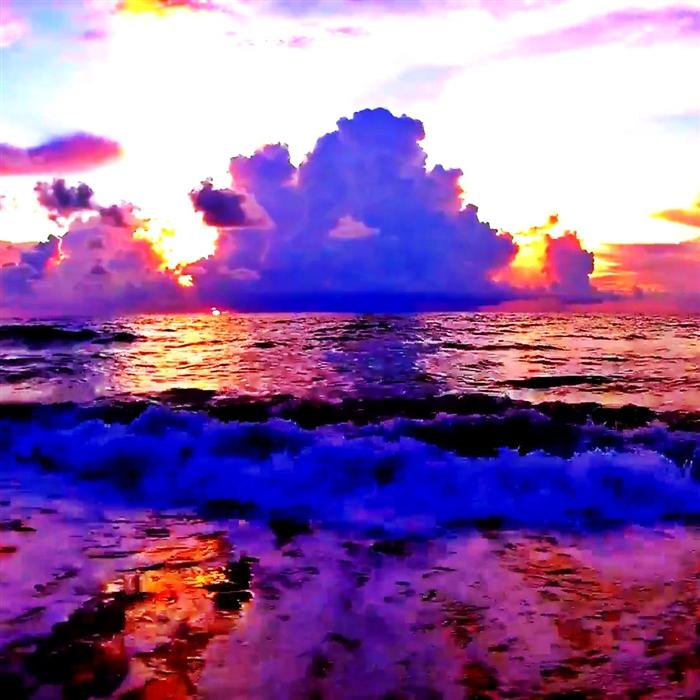 Ocean Sunrises DVD   Ambient Video