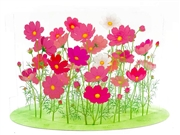 Exotic Floral Garden Multipurpose 3D Pop Up Acrylic Greeting Card