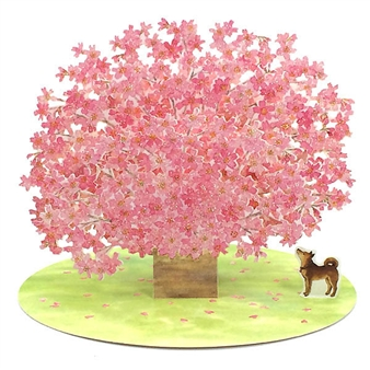 Fantastic Cherry Blossom Pop Up Decorative Greeting Card