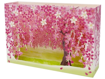 Cherry Blossom Tree Box Pop Up Decorative Greeting Card