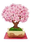 Cherry Blossom Bonsai Tree Multipurpose Pop Up Greeting Card