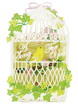 Laser Cut Birdcage For You Pop Up Greeting Card