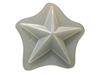 Star Soap Mold 4540