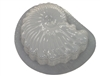 Seashell Plaster or Concrete mold 7206