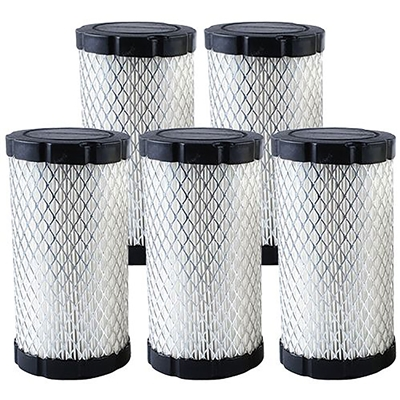 Briggs & Stratton OEM Air Filter 796031, 594201