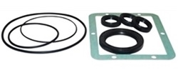 AR PUMP OIL SEAL KIT  AR1856