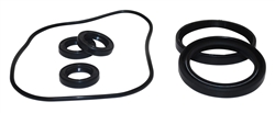 AR2188 OIL SEAL KIT FOR AR RSV PUMPS