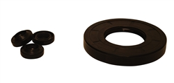 AR PUMP OIL SEAL KIT  AR2236