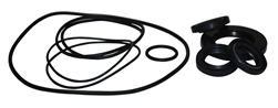 AR PUMP OIL SEAL KIT  AR2781