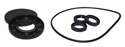 AR PUMP OIL SEAL KIT  AR2786