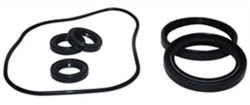 AR PUMP OIL SEAL KIT  AR2787