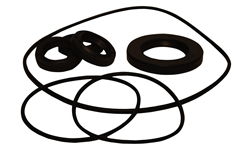 AR PUMP OIL SEAL KIT  AR2873