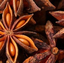 Anise Star Essential Oil<br>0.5 oz