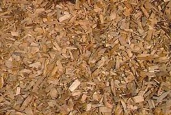 Bayberry Root Bark C/S<br>16 oz Net Wt.