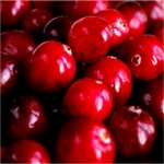 Cranberry Flavor / Aroma - Oil Based