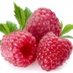 Raspberry Leaf Extract - Water Based