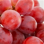 Resveratrol Extract  - Water Based
